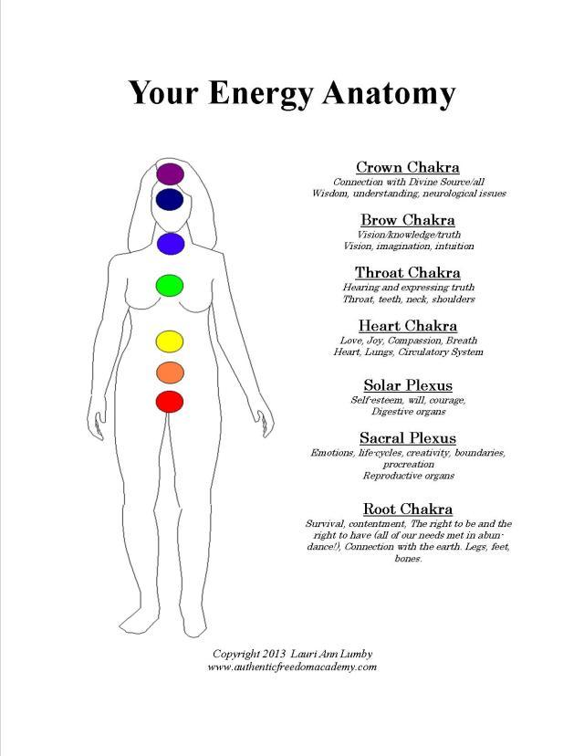 EnergyAnatomy